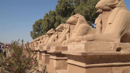 ルクソール : The sphinx-like statues with rams heads and lions bodies at the Karnak Temple Complex in Luxor, Egypt