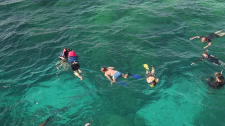 Snorkeling with masks and flippers in clear sea.