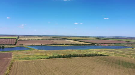 Agricultural fields near the pond. Aerial view
