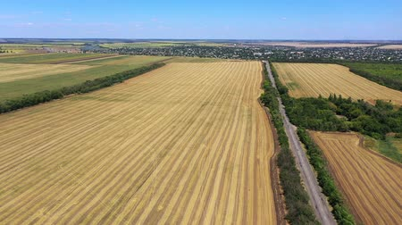 Highway among agricultural fields aerial view. Autumn. Harvesting
