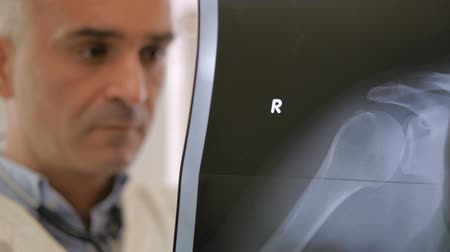 healthy office : Doctor is looking at x-ray image of the right shoulder