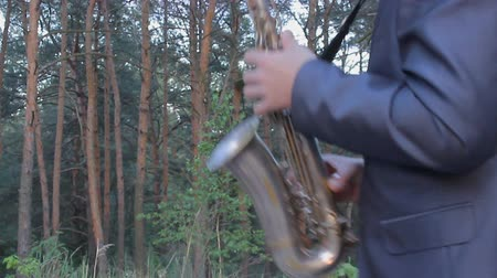 ska : Romantic musician. Saxophone plays in the wood. Happy mood in the forest Stock Footage