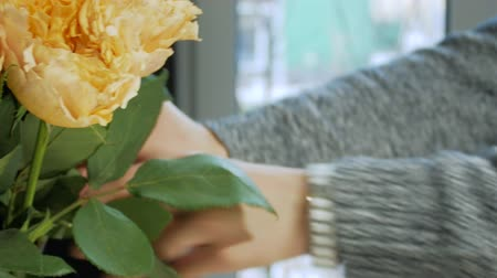 charisma : Womens hands in a warm sweater form a bouquet with yellow and orange roses. The girl cuts a flower and puts it in a vase
