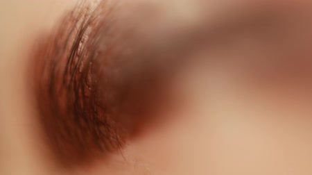 shaping : Extreme close-up of painted eyebrow. Professional care for face in beauty saloon