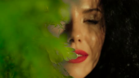 стегать : Portrait of a green-eyed young woman among green leaves. Close-up face of a beautiful curly girl with bright red lips that looks into the camera