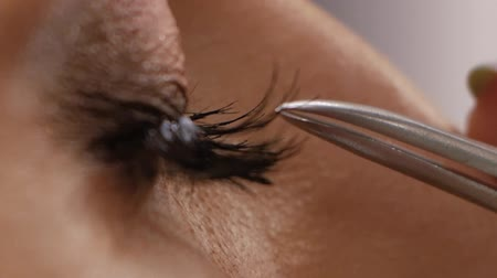kiterjesztés : Eyelash extension procedure. Female eye with long eyelashes. Eyelashes, close up, macro Stock mozgókép