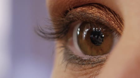 sentido : Female beautifully brown eye blinks slow motion macro closeup. Woman brunette charmingly blinks her eye Vídeos
