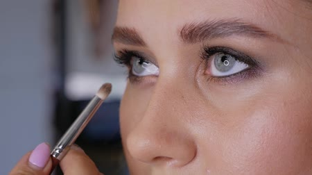 obrys : Hand of professional makeup artist makes eyeliner with a brush on the lower eyelid of a beautiful girl. Woman client in a beauty salon does makeup Dostupné videozáznamy