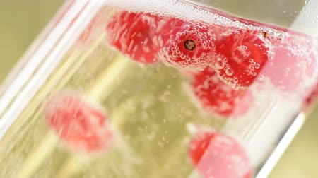 красная смородина : fresh fruits are moving in sparkling champagne