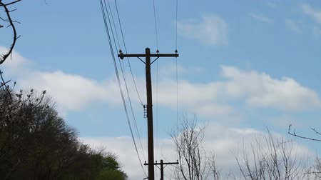 sintonia : 1352 Power Lines with Blue Sky.mov