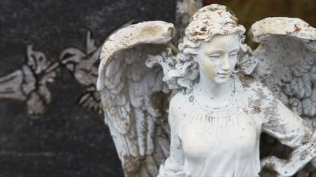 почему : 1111 Stone Angel Next to Grave Stone.mov