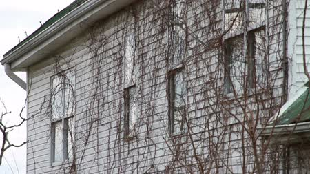 abandoned house : 1174 Old Farm House with Old Trees .mov Stock Footage