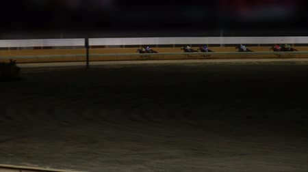 koń : Horses Racing Down the Track in Slow Motion Wideo