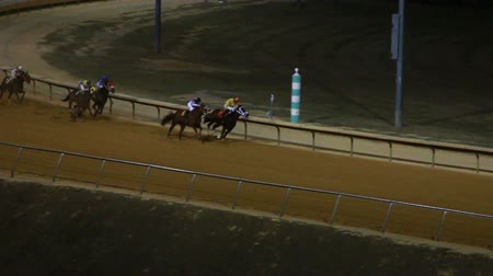stopa :  Horses Racing Down the Track in Slow Motion  Dostupné videozáznamy