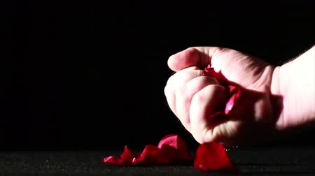 ölen : Dying Love, Rose Petals Being Crushed, Slow Motion