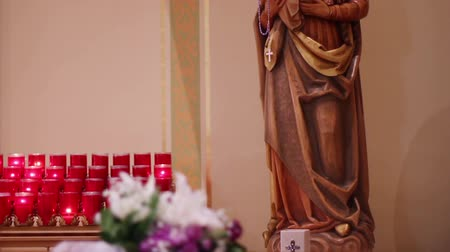 christian : Mary Mother of Jesus Stock Footage