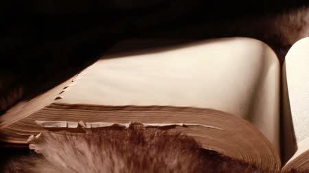 İncil : Ancient Giant Book Sitting on Fur (with blank page)