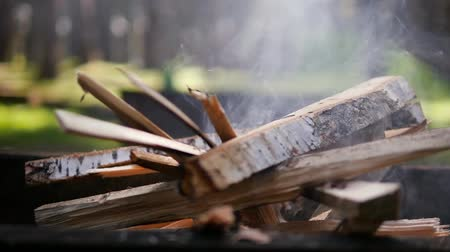 smolder : Firewood burning in nature. Slow smoldering. Making fire in the grill for barbecue. Summer season in nature