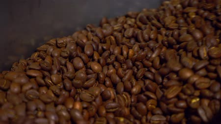 espressomachine : Verkoelende koffiebonen na het branden. Braadmachine, close-up Stockvideo