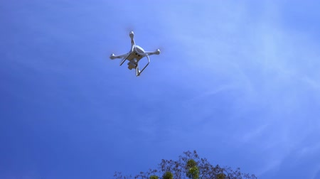 The pilot catches the drone against the blue sky, Copter, the drone descends from the top and lands in the mans hand Stock Footage