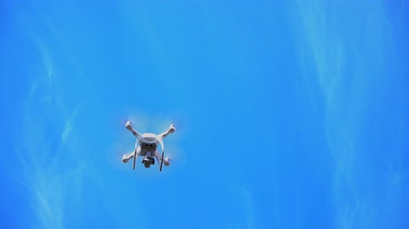 Copter, drone flies near the tops of trees against the blue sky Stock Footage