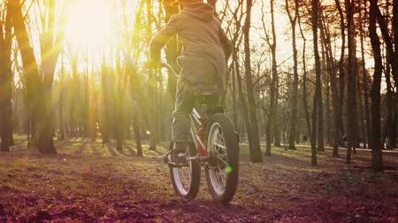 two wheeled : Little boy learns to ride a bicycle in the park, sundown park, slow motion Stock Footage