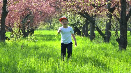típico : Boy going along the high grass in the garden, tall grass, slow motion