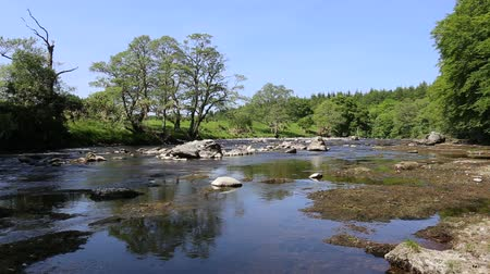 River North Esk near Edzell Angus Scotland