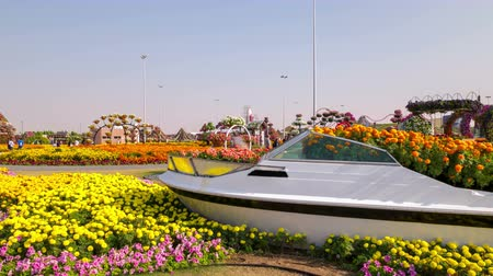 blooming place 4k time lapse from dubai magic garden Stock Footage