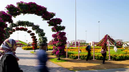 blooming road 4k time lapse from magic garden dubai