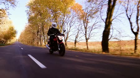 Steadycam shot of motorcyclist driving his motorbike on the road during autumn sunset. Yellowleaves trees along the road