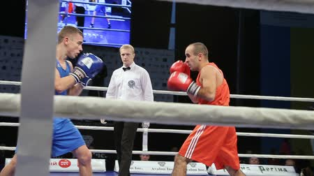 углы : LVIV, UKRAINE - November 14, 2017 Boxing tournament. Midweight boxers fight in boxing ring on tournament. Steadycam shot.