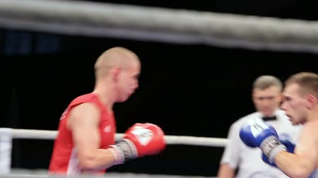 medal : LVIV, UKRAINE - November 14, 2017 Boxing tournament. Lightweight boxers fight in boxing ring on tournament. Steadycam shot.
