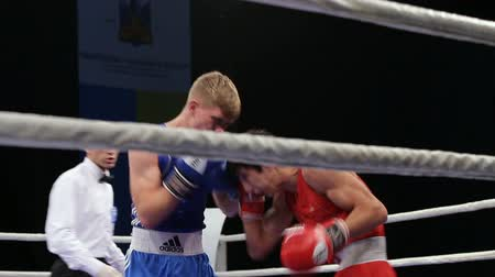 árbitro : LVIV, UKRAINE - November 14, 2017 Boxing tournament. Midweight boxers fight in boxing ring on tournament. Vídeos