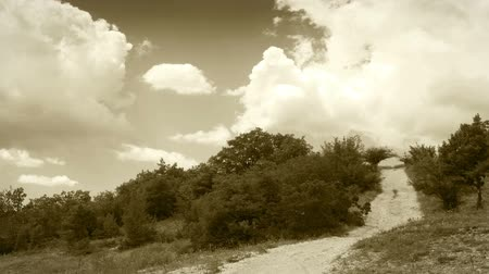белый : Clouds Time Lapse over country road: Black and White footage
