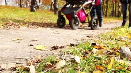 sáně : Young couple walk in autumn park with little buggy