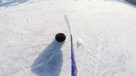 kanadai : Ice Hockey Dribbling with stick and puck