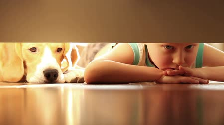 Домашняя жизнь : Little boy with his best friend beagle dog under the bed