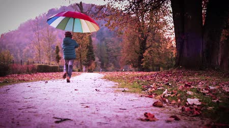 rainy : Merry little boy jumps with pied umbrella in autumn park