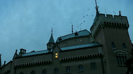 fantasma : Night castle. Something startled flock of birds from the roof Stock Footage