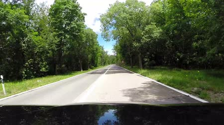 řidič : Bonnet-view footage of a car going down the winding road High Definition Video: 29.97 FPS 9sec Please look another footages on my TrainArrival Account. Best Wishes.