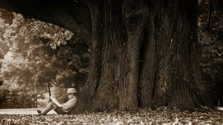 pictured : Sepia footage of a boy sitting at the foot of a gigantic tree and reading