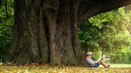 pictured : Little boy in a straw hat sits under the tree and reads a book magical time