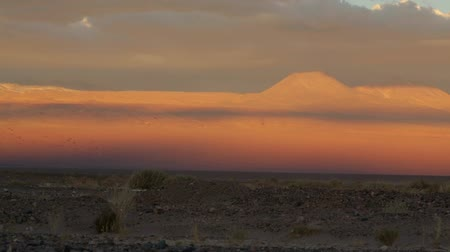 ралли : Desert of Atacama in Chile. Generic images of the desert. Full Frame 1080 image shot with day light.