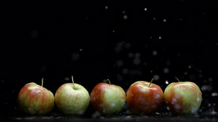 fructose : Red and yellow apples and water splash with droplets on black background