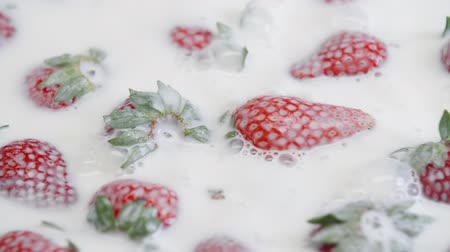laktóz : Ripe strawberry falling in milk. Summer berries in white cream