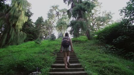 walkers : Girl climbs up the hill along stone staircase through a forest of coniferous and tropical trees Stock Footage