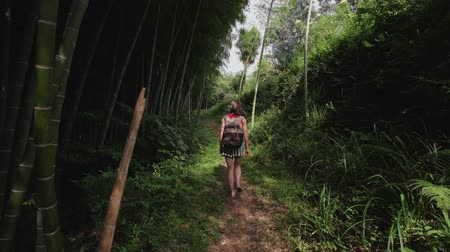 stroll : Travel woman with bag walks along path in tropical park of tropical plants, palms, bamboo plantation