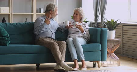 compreensão : Retired senior couple talking drinking tea in modern living room lounge together, happy old adult grandmother and grandfather enjoying coffee having trust conversation relaxing sit on sofa at home Stock Footage