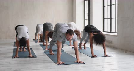 lichaamshouding : Male yogi coach and multi-ethnic group in comfy sportswear performing three asana together Upward Downward Facing Dog Pose, Standing Forward Bend on mats indoors. Yoga class session wellness concept